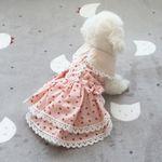 [펫딘]딸기리본 레이스 똑딱이 단계 강아지옷 원피스