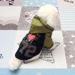 [펫딘]날개 하트 래글런 후드 강아지옷