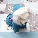 [펫딘]패딩 털 후드 점퍼 버튼 강아지옷 아우터 블루
