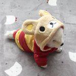 [펫딘]꿀벌 똑딱이 단계조절 후드 강아지옷 레드 A002
