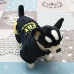 [펫딘]벨티드 포켓 똑딱이 단계조절 강아지옷 네이비