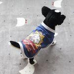 [펫딘]인디안 이글스 랍빠 배색 강아지옷 티셔츠