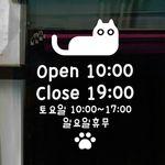idk458-오픈앤클로즈 고양이