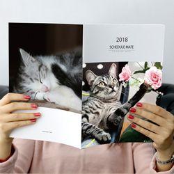 2018 스케줄메이트 포토캘린더노트-큐트캣