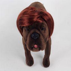 강아지 고양이 펫 가발 지후선배 (브라운)