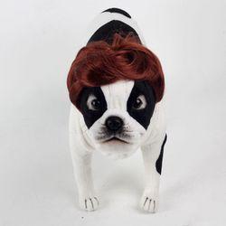 강아지 고양이 펫 가발 댄디컷 (브라운)