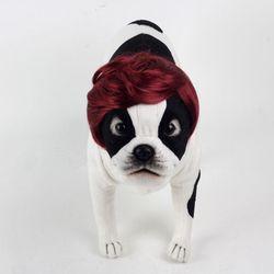 강아지 고양이 펫 가발 댄디컷 (와인)
