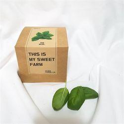 바질키우기 세트 (grow kit)