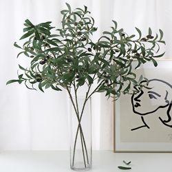올리브나무 - 인테리어조화