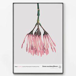 메탈 꽃 식물 포스터 액자 Coccinea flower [대형]