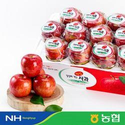 [농협] 경북사과 세척 안심사과 3.5kg (15-17과)