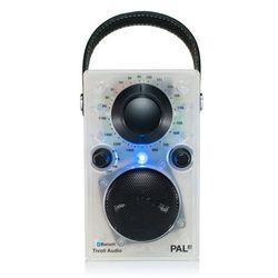 Tivoli Audio 한정판 블루투스 스피커 Pal BT GLO