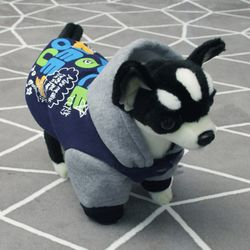 [펫딘]컬러 레터링 배색 강아지옷 후드