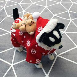 [펫딘]아기 곰돌이 똑딱이 올인원 강아지옷 후드
