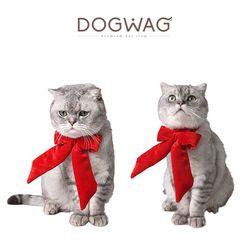 강아지 고양이 산타모자와 빨간리본