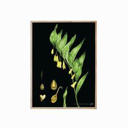 식물도감 - 꽃01 원목액자(16R)