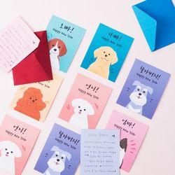 강아지 가족 카드
