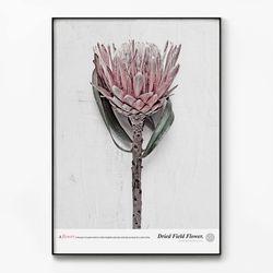 메탈 식물 인테리어 액자 Field flower A [대형]