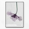 메탈 북유럽 포스터 꽃 액자 Field flower B [대형]