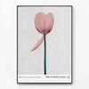 메탈 북유럽 포스터 식물 액자 Field flower C [대형]