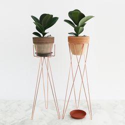 화분스탠드(H)+소피아 고무나무 이태리 토분 세트