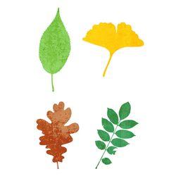 블랭코 스텐실도안701 나뭇잎 모음(2)