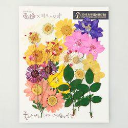[압화 꽃모음 - A타입] 미니화원 꽃모음