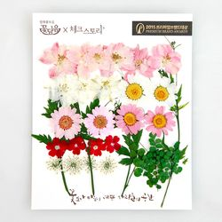 [압화 꽃모음 - B타입] 미니신부 꽃모음