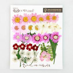 [압화 꽃모음 - B타입] 로맨틱가든 꽃모음