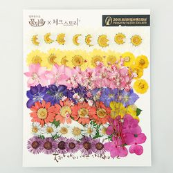 [압화 꽃모음 - C타입] 화원 꽃모음