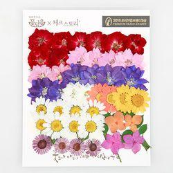 [압화 꽃모음 - C타입] 장미정원 꽃모음