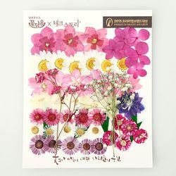 [압화 꽃모음 - C타입] 와인 꽃모음