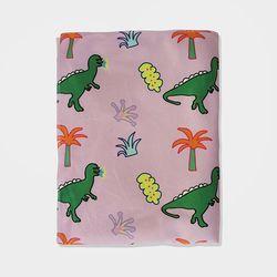 극세사 담요 dinosaur blanket