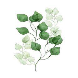 [DIY명화]Q3221 스페이스 Leaf (잎) size 40x50cm