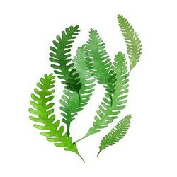 [DIY명화]Q3223스페이스 Leaf (잎) size 40x50cm