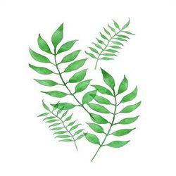 [DIY명화]Q3225스페이스 Leaf (잎) size 40x50cm