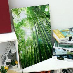 ic244-아크릴액자대나무숲