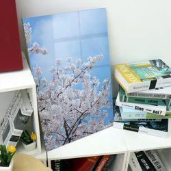 ic249-아크릴액자벚꽃나무