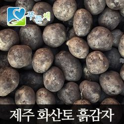 [푸른채] 제주 화산토 흙감자(중골프공크기) 10kg