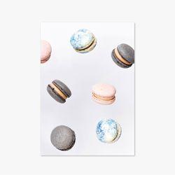 Nature Dot Series - Type A - Macaron