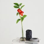 Flower DNA vase (1구 원형)