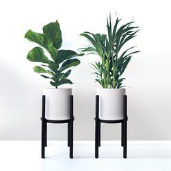바우하우스 H형 화분스탠드+공기정화식물 선택