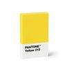 New 팬톤 카드명함 케이스(옐로우012)