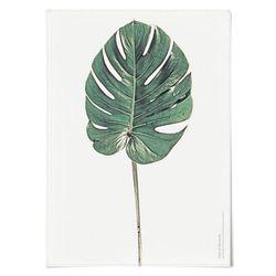 패브릭 포스터 F178 식물 나뭇잎 no.2 [중형]