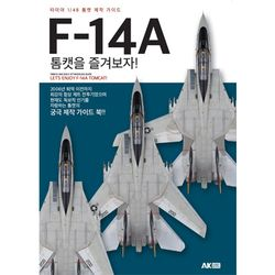 F-14A 톰캣을 즐겨보자