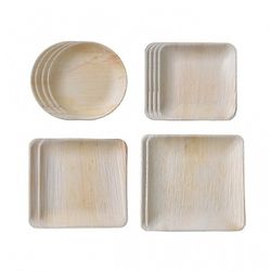 본플라 천연야자나무 일회용 패밀리 세트 (12개 세트)