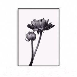 패브릭포스터 식물 꽃그림 액자 [중형]
