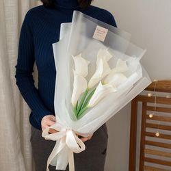 프로포즈 7송이 카라꽃다발(대)