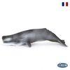 파포 해양 피규어 향유고래(56021)