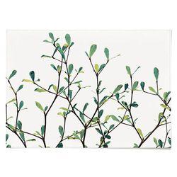 패브릭 포스터 F182 북유럽 식물 Sprout [중형]